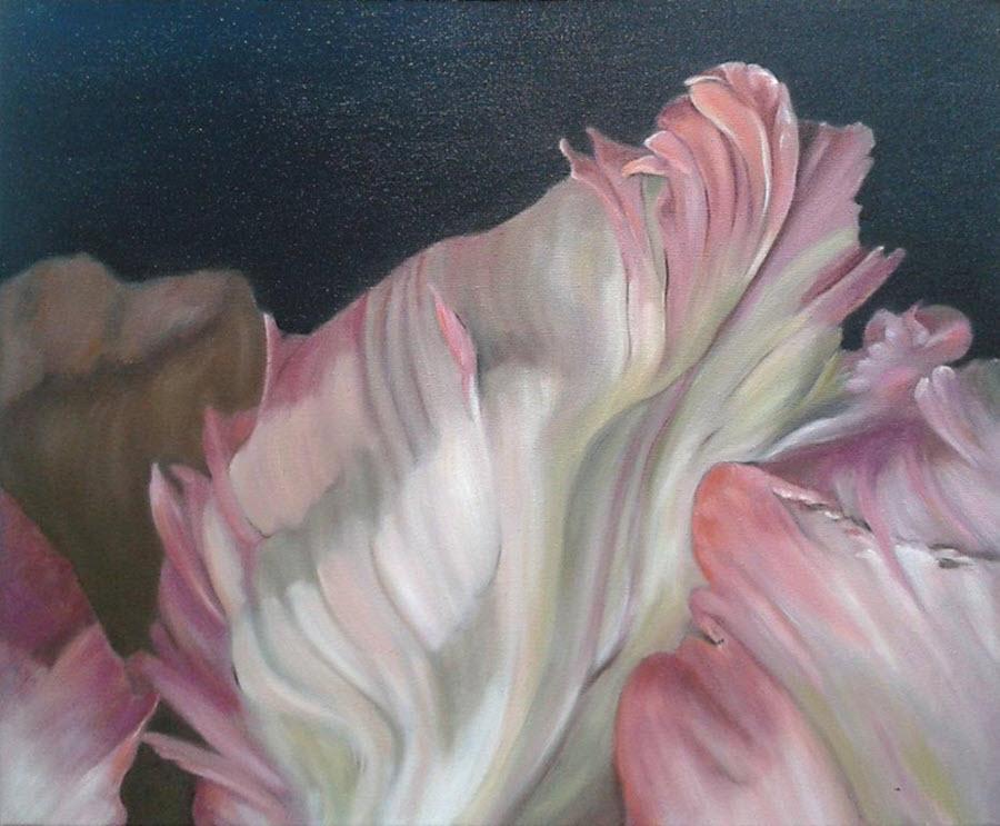-arbparrot-tulip-detail-II-oil-50x60cm