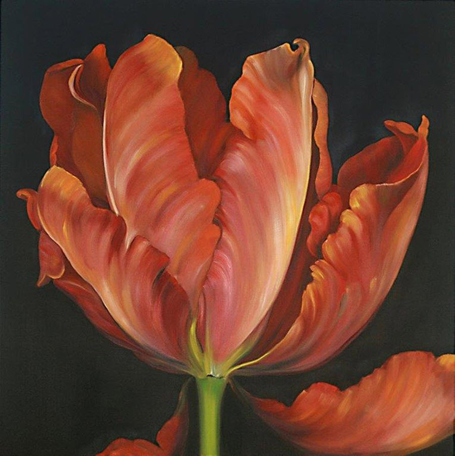 -arbtulip-red-oil-100x100cm